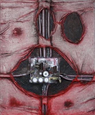 Sergey Viktorovich Solomatin. Bionics I. Heart