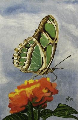 Artashes Vladimirovich Badalyan. Butterflies-10 - x-hardboard-m - 30x20