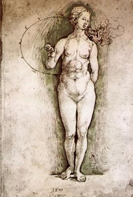 Альбрехт Дюрер. Обнаженная женская фигура со штудиями пропорций