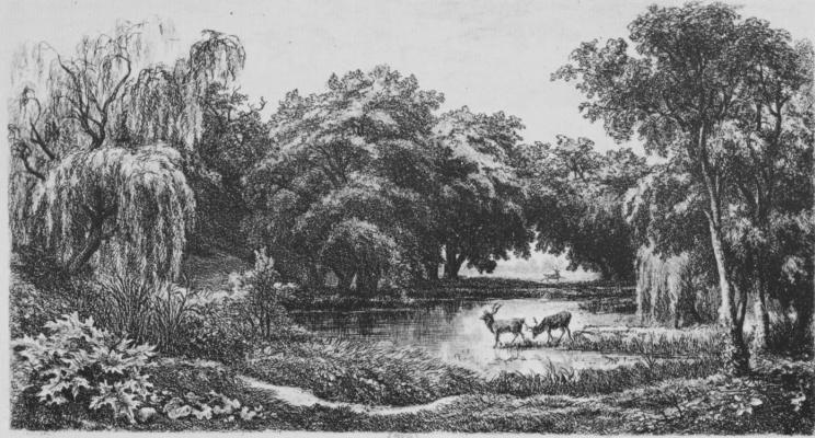 Charles-Francois Daubigny. Deer in the pond