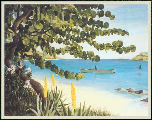 Уильям Вуд. Пляж пеликанов