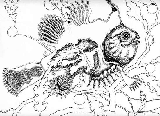 "Svetlana Sergeevna Malyodnik. Portrait of a fish ""Dreamer"""