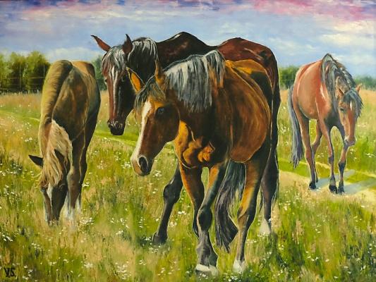 Виктория Соколик. Ходят кони
