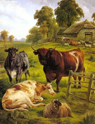 Чарльз Джонс. Племенные быки