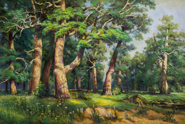 Savely Kamsky. Copy of Ivan Shishkin's painting Oak Grove