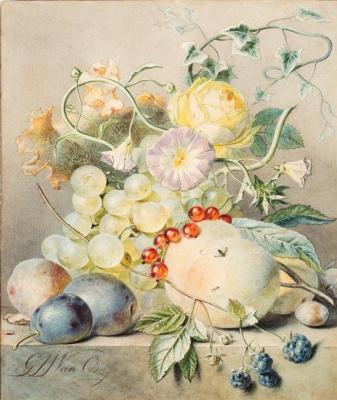 Георг Якоб Иоганн ван Ос. Натюрморт с фруктами