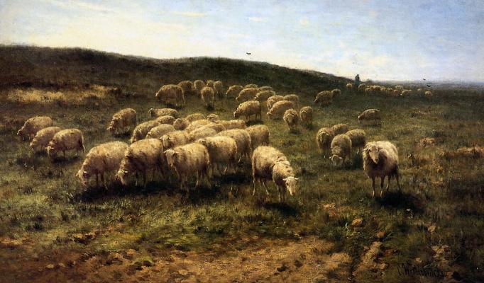 Корнелис Вестербик. Пастух с овцами