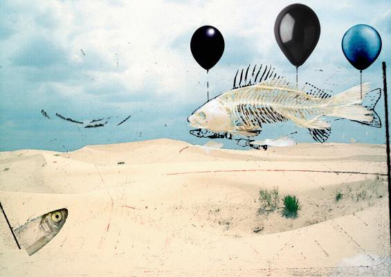 Random Human. Flying fish
