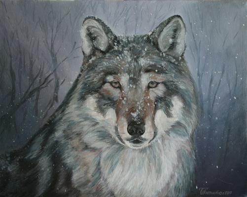 Ольга Александровна Плотникова. Волк