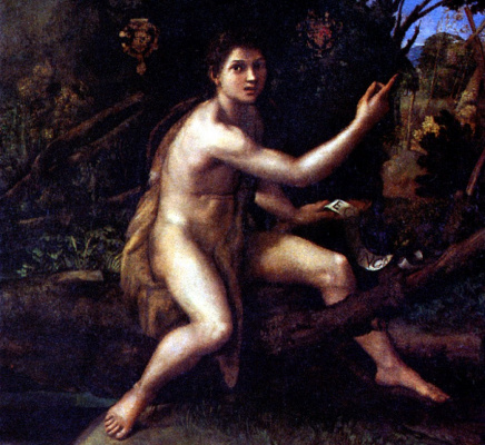 Raphael Sanzio. St. John the Baptist in the wilderness
