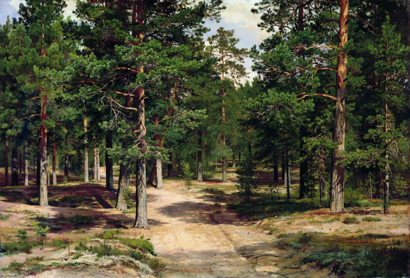 Ivan Ivanovich Shishkin. The Sestroretsk Bor