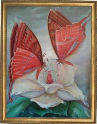Любовь это бабочки на утреннем цветке