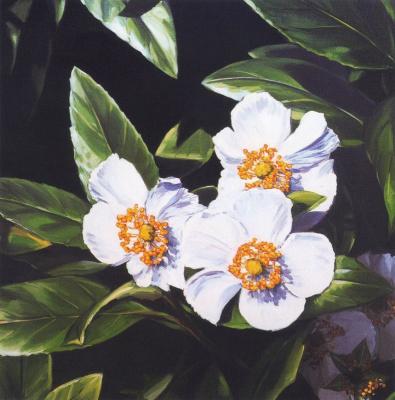 Лиза Милрой. Белые цветы