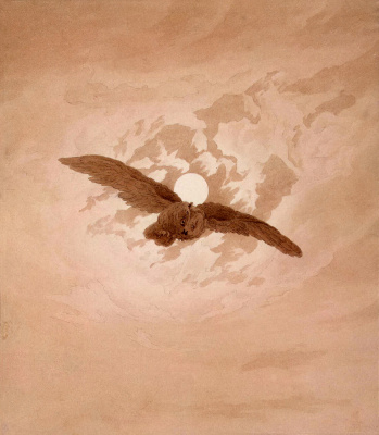 Flying owl on the background of the lunar sky