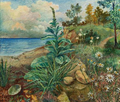 David Davidovich Burliuk. Shore