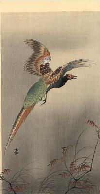 Охара Косон. Птицы 95