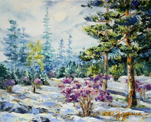 Elena Nikolaevna Zorina. Spring in Altai