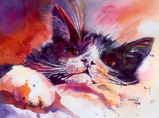 Крис Зекас. Кот