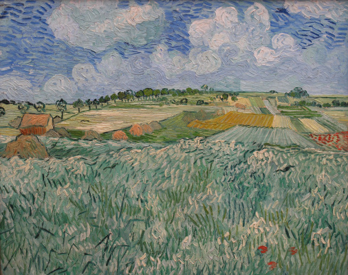 Vincent van Gogh. Field have Aviera