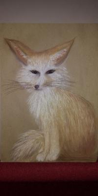 Sara Astaeva. Sand Fox Fenech