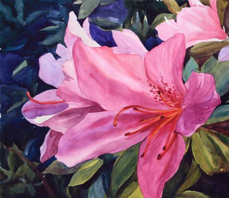 Violetta Dudnikova. Pink