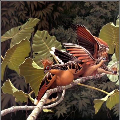 Ричард Слоан. Тропические птицы 2
