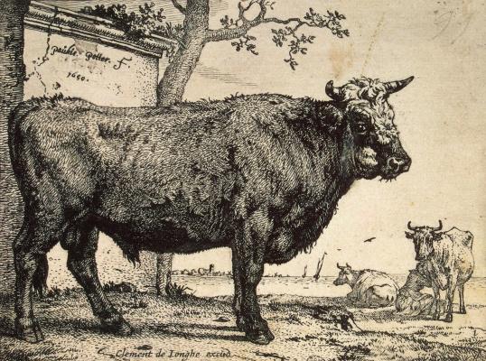 Paulus Potter. Bull