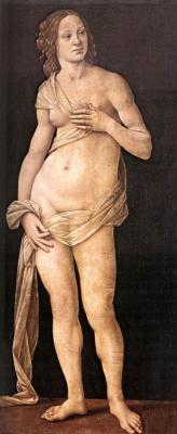 Lorenzo di Credi. Venus
