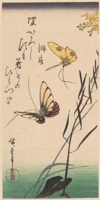 Утагава Хиросигэ. Три взгляда лета: бабочки
