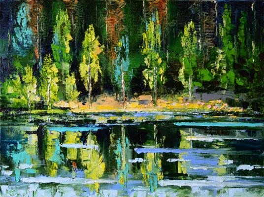 Vadim Anatolyevich Stolyarov. Swan lake