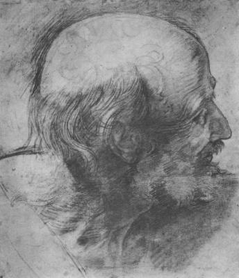 """Рафаэль Санти. Эскиз головы апостола в профиль для """"Преображения"""""""