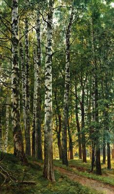 Ivan Ivanovich Shishkin. Birch grove