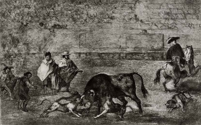 Francisco Goya. Series Tavromahiya sheet: Dogs attack the bull