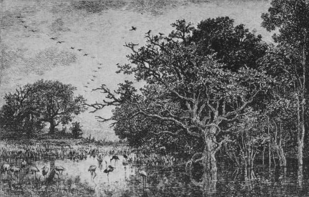 Charles-Francois Daubigny. Marsh with storks