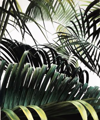 Anastasia Oraina. Welcome to the jungle