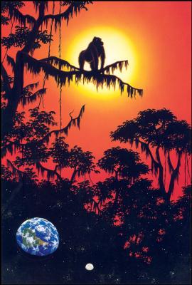 Уильям Шиммель. Тропический закат