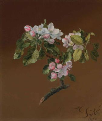 Мартин Джонсон Хед. The branch of a blossoming apple tree