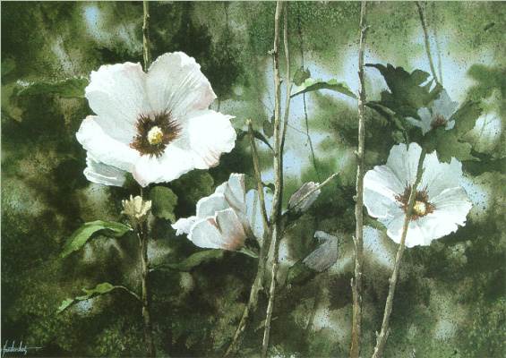 Рэй Хендершот. Белые цветы