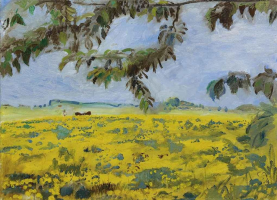 Cuno Amiè. Field of dandelion (Lion's tooth)