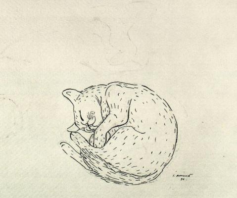 Хуан Сориано. Кошка