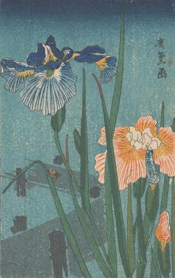 Утагава Хиросигэ. Ирисы и пчела