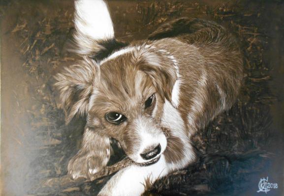 Kirichenko Semenovich Alexander. Street puppy