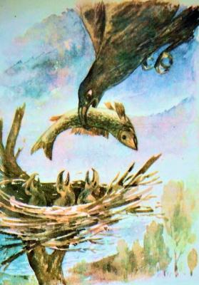Salavat Magomedovich Salavatov. Eagle. True story