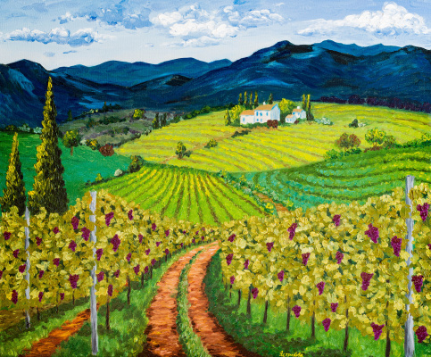 Arina Yuryevna Yastrebova. Vineyards