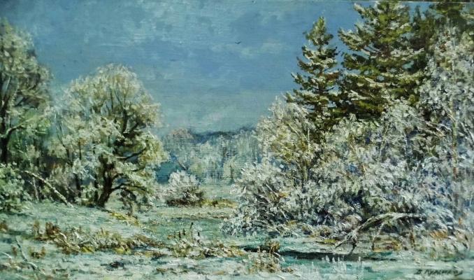 Victor Vladimirovich Kuryanov. Magic forest