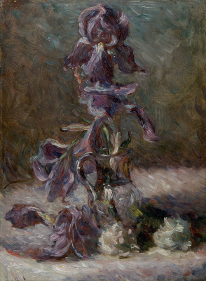 Marie Bracquemond. Iris in a vase