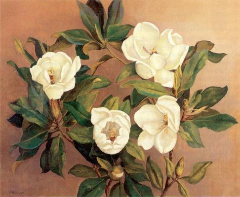 Флоренс Маккланг. Белые цветы