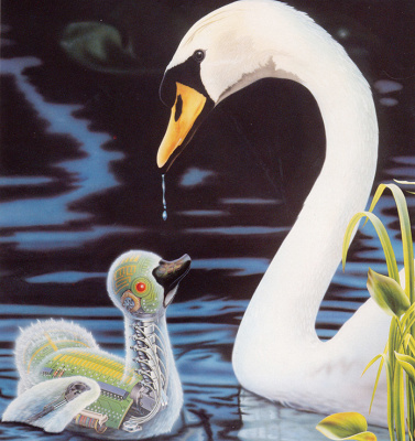 Рон Флеминг. Лебедь и малыш