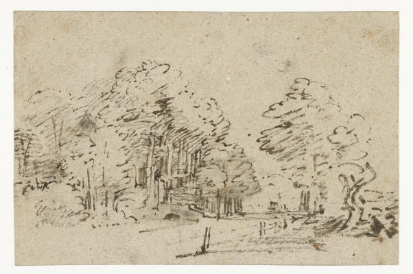 Рембрандт Харменс ван Рейн. Амстелвенсевег близ Амстердама