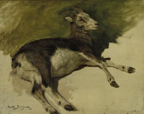 Rose Bonhur. Lying goat